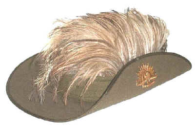 Reproduction of the WW1 Light Horse slouch hat   emu plumes 91f28d1fd
